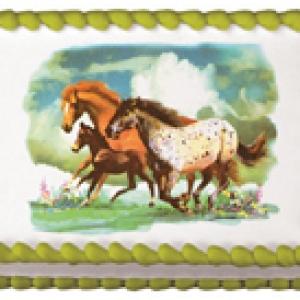 Wild Horses Edible Image 12 CT