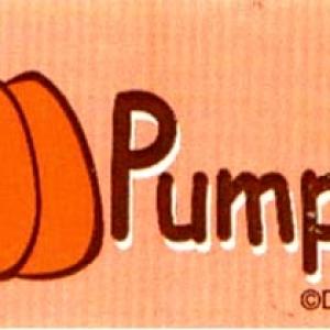 Pumpkin Labels 500 CT