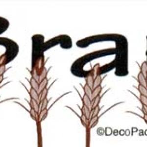 Bran Labels 500 CT