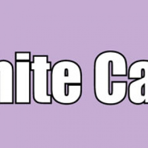 White Cake Labels 500 CT