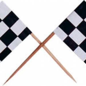Checkered Racing Flag Pick Assorted 144 CT