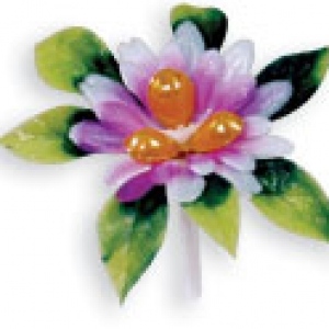 Water Lily Pick 2 1/2″ 72 CT
