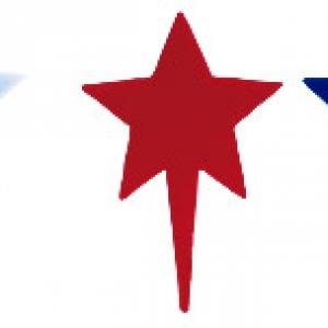 Star Patriotic Picks Red, White & Blue 3″  144 CT